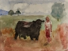 woman and a bull